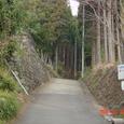 丹沢 大倉登山口